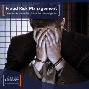 Read Our Fraud Risk Management Brochure!