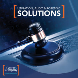 Read Our Litigation Support Brochure!