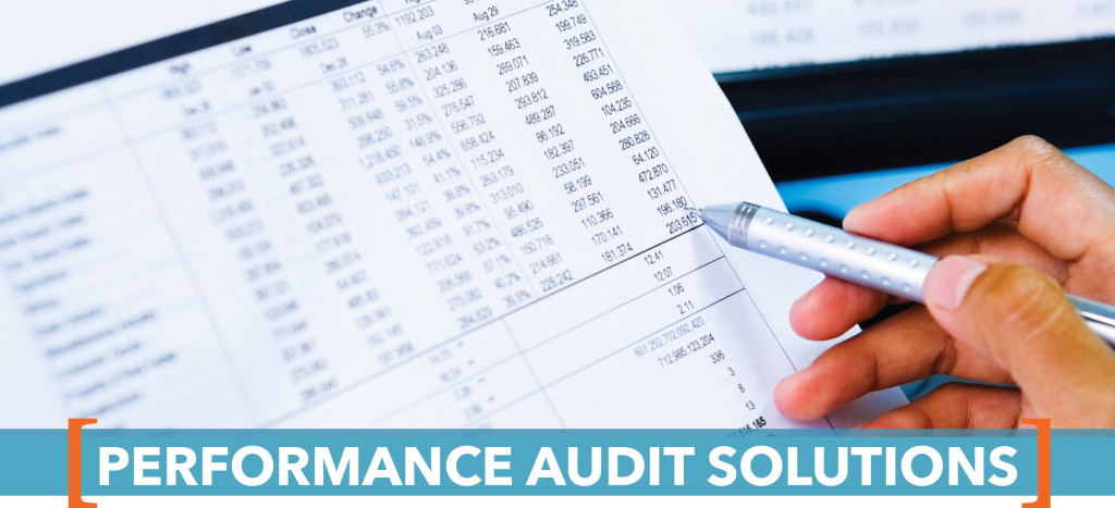 PerformanceAuditSolutions